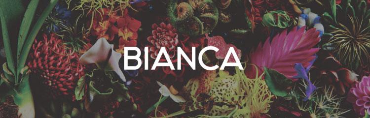 BIANCA CLINIC 銀座バナー