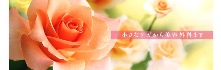 野崎クリニック形成外科・美容外科バナー